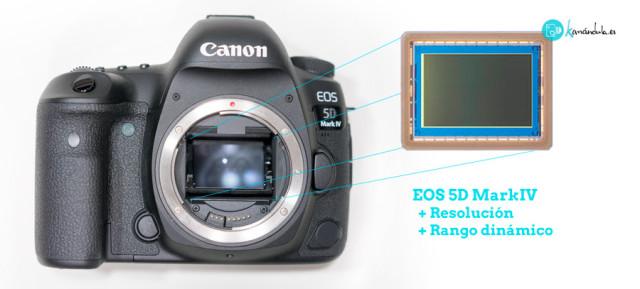 sensor-5dmkiv-nuevo-sensor-5dmk4-eos