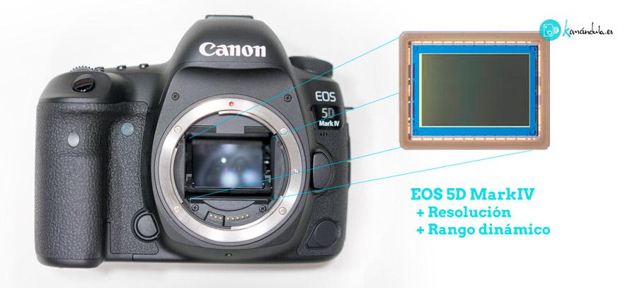 Nuevo sensor 5DmkIV Canon Review Español